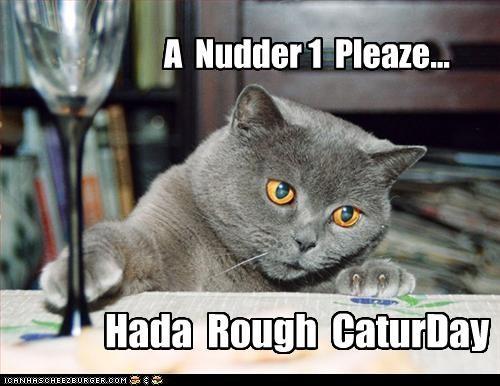 A Nudder 1 Pleaze... Hada Rough CaturDay