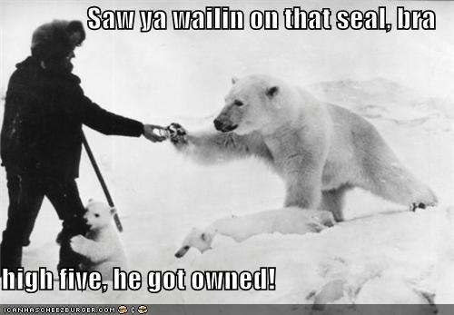 animal funny Photo Sad - 4354932480