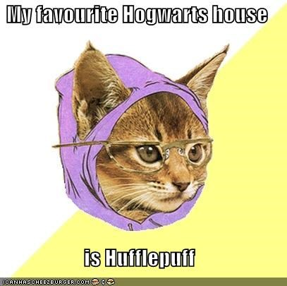Hipster Kitty Hogwarts hufflepuff witchcraft wizardry - 4355629824