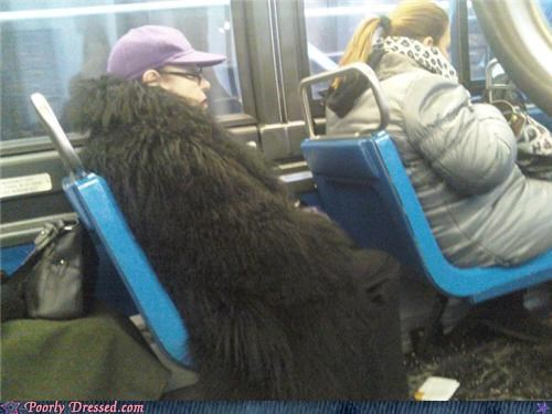 bus,coat,cousin it,fur