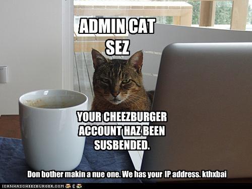 Cheezburger Image 4356471040