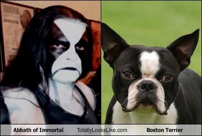 abbath boston terrier dogs immortal makeup musician rockstar