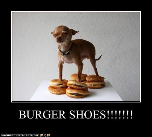 Cheezburger Image 4356588800