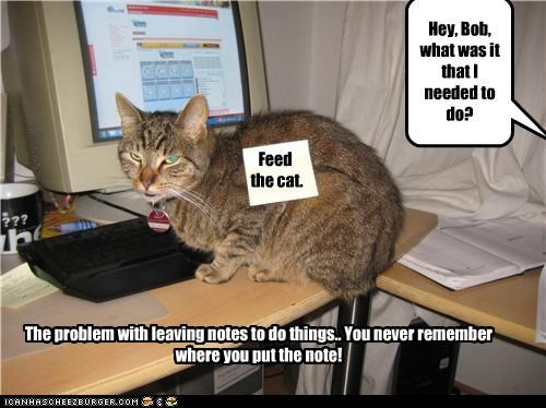Feed the cat. The problem with leaving notes to do things.. You never remember where you put the note! Hey, Bob, what was it that I needed to do?