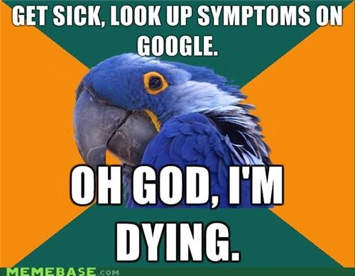 dying,google,Paranoid Parrot,sick,symptoms
