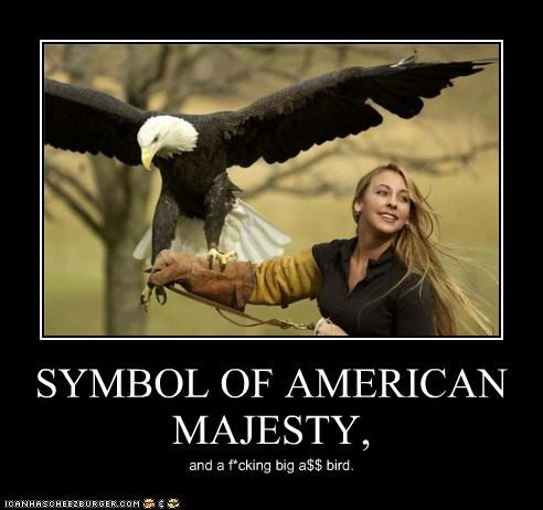 america bald eagle bird majesty sexy woman - 4357794560