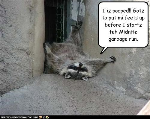 I iz pooped!! Gotz to put mi feets up before I startz teh Midnite garbage run.