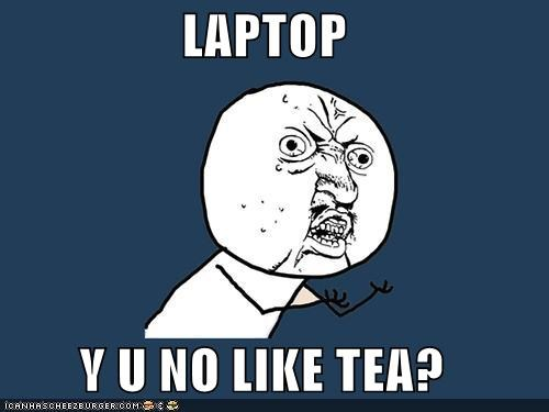 laptop,not friends,tea,Y U No Guy