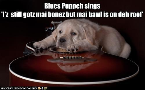 Blues Puppeh sings 'I'z still gotz mai bonez but mai bawl is on deh roof'