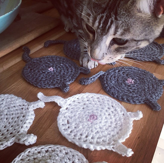 a funny list of butthole coasters for drinks of cats butts