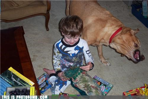 batman,demons,dogs,kids,photobomb,toys