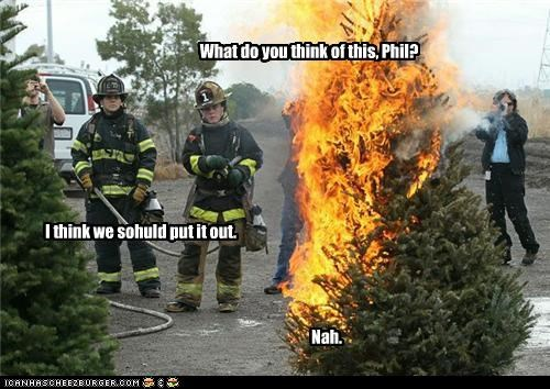 christmas tree,fire,firefighter,indecisive,lazy,trees