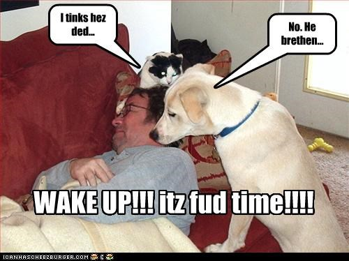 I tinks hez ded... No. He brethen... WAKE UP!!! itz fud time!!!!