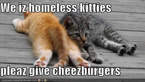 Cheezburger Image 4360332800