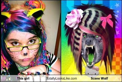 girl,Memes,scene girl,scene wolf
