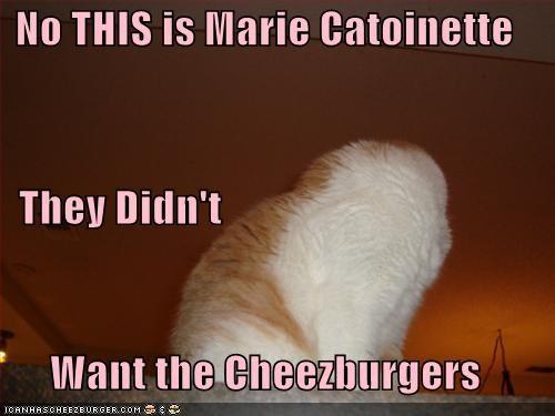 Cheezburger Image 4362150656