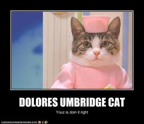 DOLORES UMBRIDGE CAT Youz is doin it right