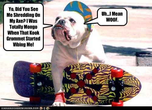 Yo, Did You See Me Shredding On My Axe? I Was Totally Mongo When That Kook Grommet Started Vibing Me! Uh...I Mean WOOF.
