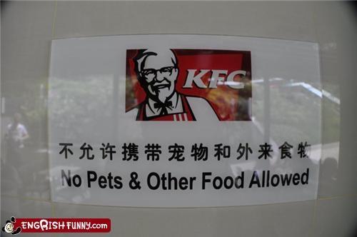 food,kfc,pets