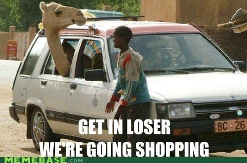 camel mean girls Memes Quotable Quotes station wagon - 4365833984