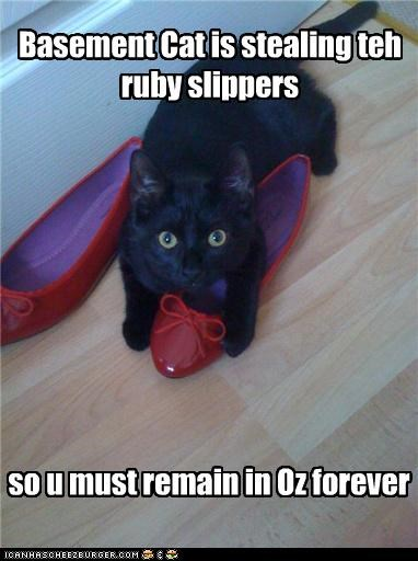 Basement Cat is stealing teh ruby slippers so u must remain in Oz forever