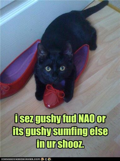 i sez gushy fud NAO or its gushy sumfing else in ur shooz.