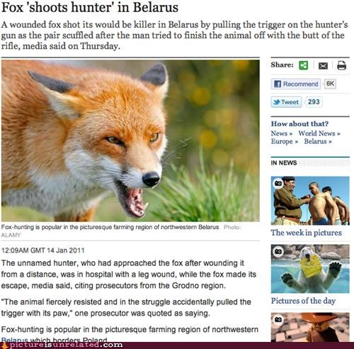 foxes,guns,in soviet russia,news,whoops,wtf