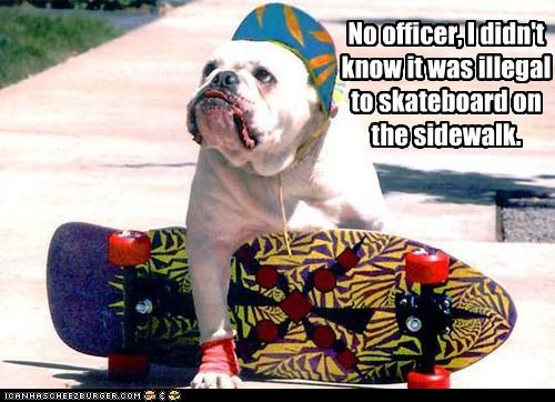 No officer, I didn't know it was illegal to skateboard on the sidewalk.