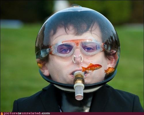 animals art fashion fish Fishbowl fishbowl helmet wtf - 4367181056
