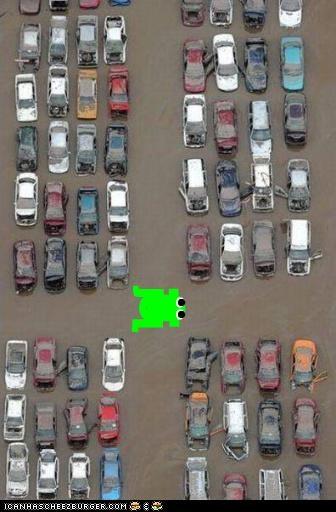 australia cars flood frogger video games - 4367678720