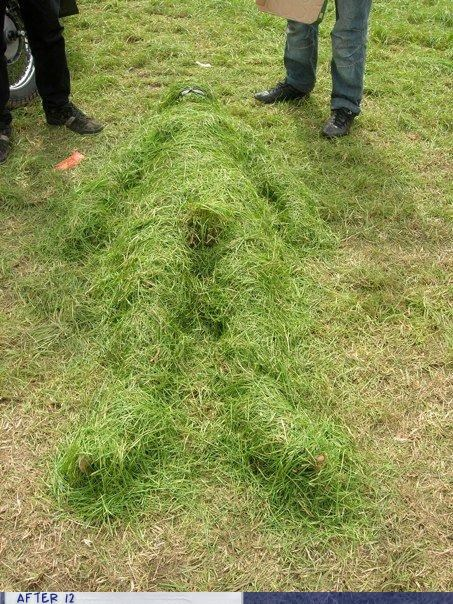 clippings,grass,passed out