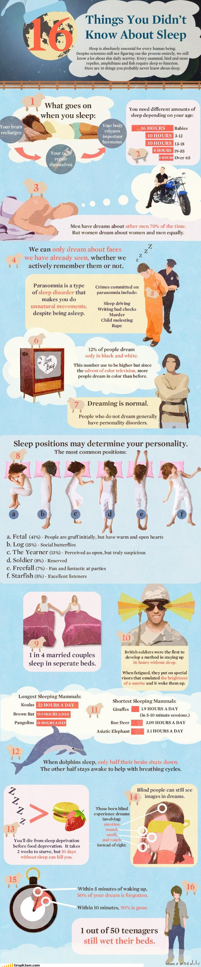 bedwetting,cells,facts,infographic,interesting,sheep,sleep