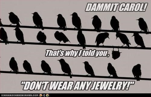 advice,bird,birds,caption,captioned,dont,Jewelry,perching,power line,silhouette,upside down,wear,weight