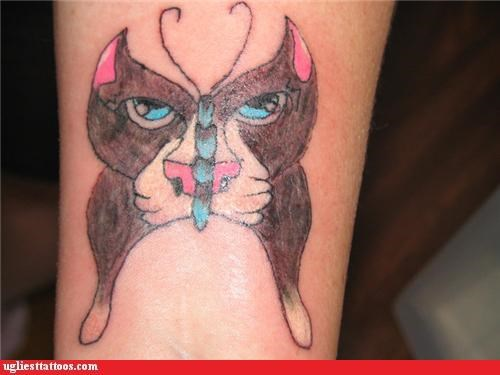 wtf butterfly tattoos Cats funny - 4369294336