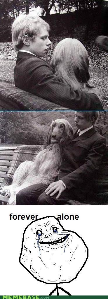 dogs forever alone mans-best-friend - 4370192640