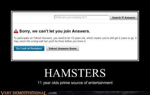 HAMSTERS 11 year olds prime source of entertainment