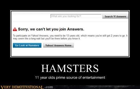 11 answers hamsters yahoo - 4370339328