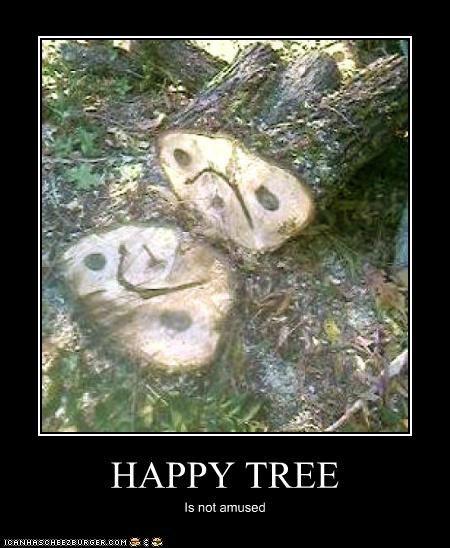 HAPPY TREE Is not amused