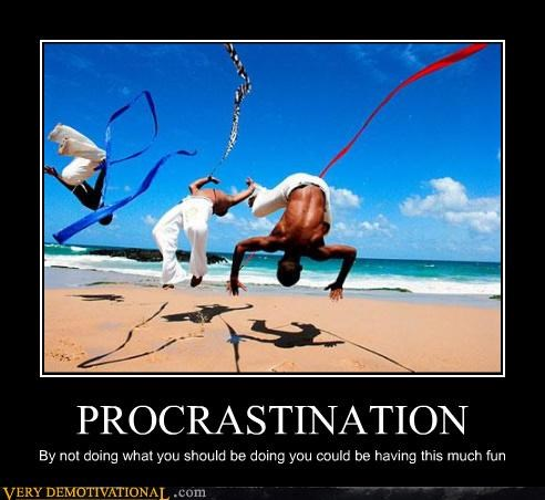 PROCRASTINATION By not doing what you should be doing you could be having this much fun