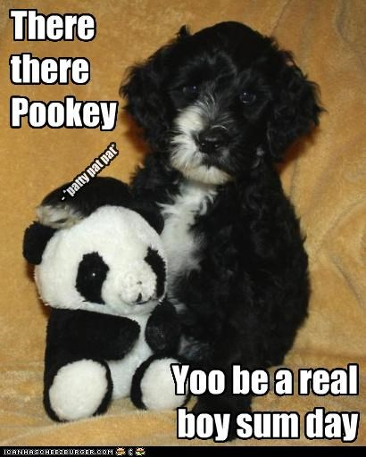 There there Pookey - *patty pat pat* Yoo be a real boy sum day