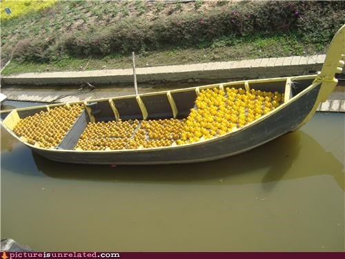 boats dirty water ducks OverKill 9000 water wtf - 4371912448