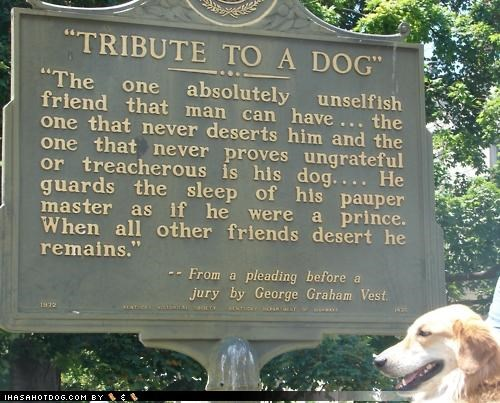carving golden retriever Hall of Fame plaque pleading quote testimony tribute tribute to a dog