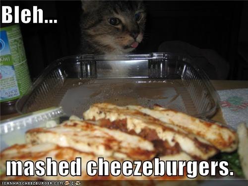 Cheezburger Image 4372566016