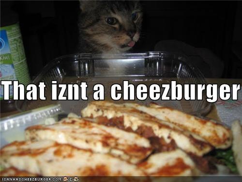 Cheezburger Image 4372633344