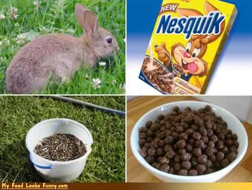 cereal,cereals-grains,droppings,nesquik,nesquik cereal,poop,rabbit,rabbit droppings