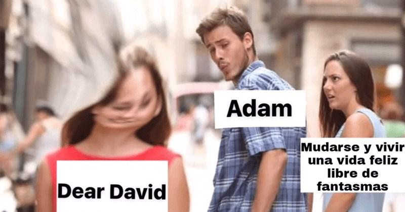 explicando dear david