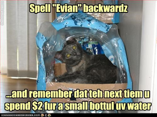 backwards bottle caption captioned cat container cost crate evian naïve reminder spell spelling water - 4373104640