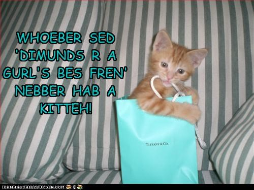 adage adorbz bag best caption captioned cat correction cute diamonds friend kitten saying tabby - 4373205760