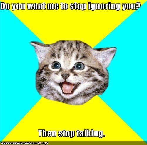 Happy Kitten ignoring you shut up - 4374631168