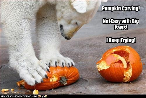 Pumpkin Carving!  Not Easy with Big Paws!  I Keep Trying!